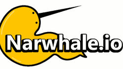 narwhale-io